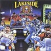 Lakesideparty_patrol
