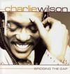 Charlie_wilsonbridgeing_the_gap