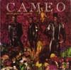 Cameoemotional_violence
